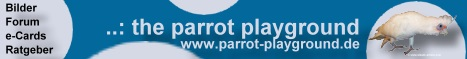 Auf slowik-online werden ihnen nicht nur Hintergrundinformationen gegeben, sondern auch tiefe Eindrücke in die Papageien Haltung. Von der Ernährung  bis hin zu  Bildern und Tonaufnahmen von Anni und Robby den Graupapageien u. Yogi dem Nacktaugenkakadu. Mit E-Cards, Forum, Links usw.